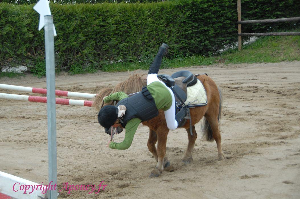 poney 73